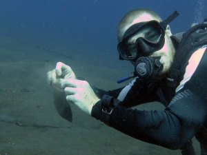 Sediment collecting