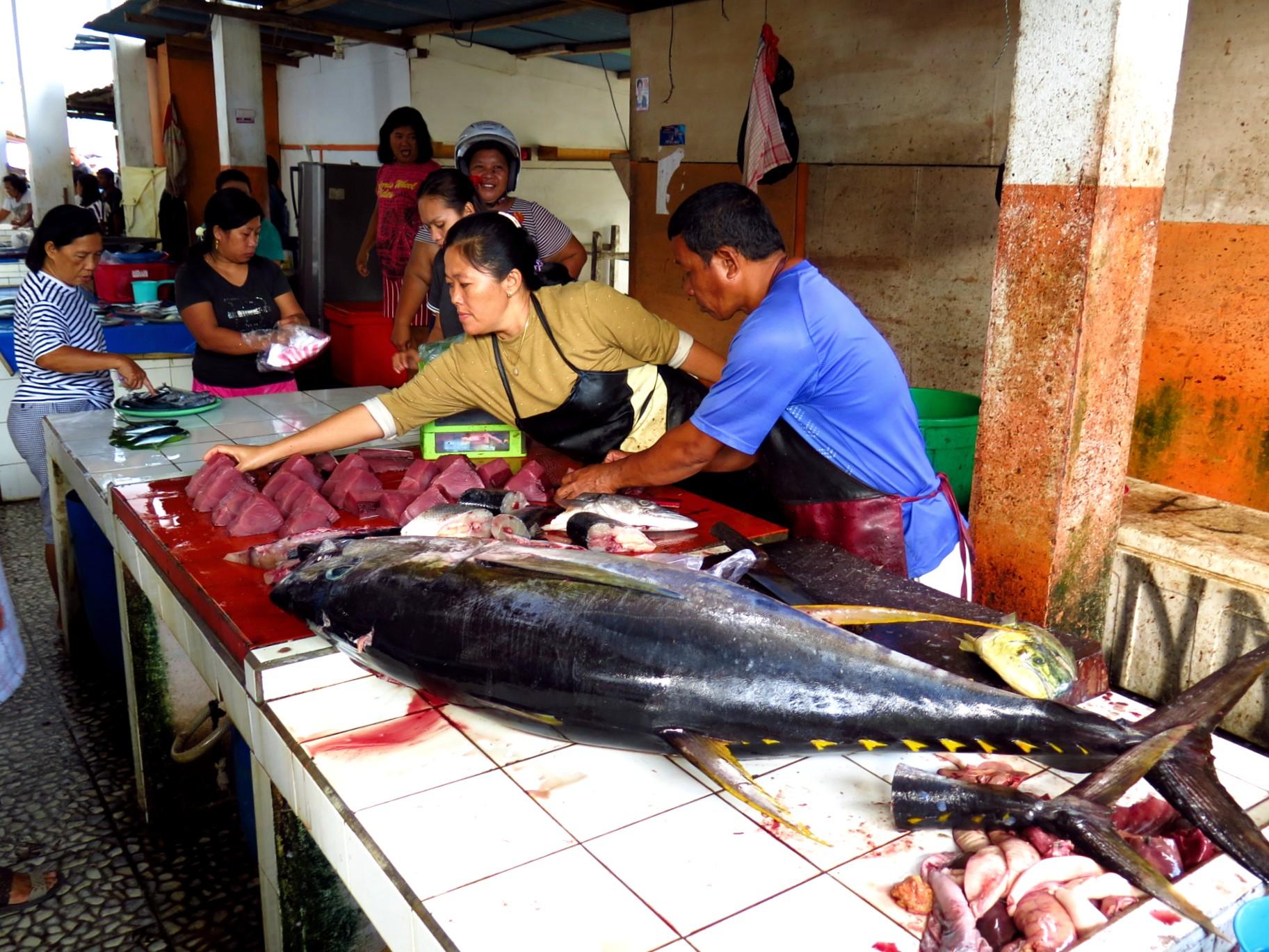 Fish market Tahuna_yellowfin tuna